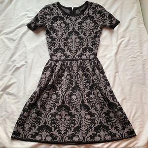 Romeo & Juliet Black Grey Sweater Dress Size Small